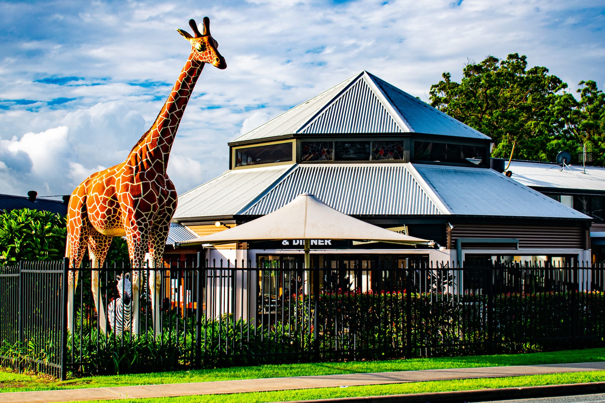 Bago Tavern famous giraffe Jerry